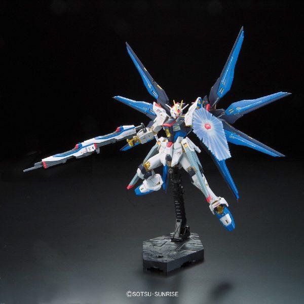 Strike Freedom Gundam Protection Flight